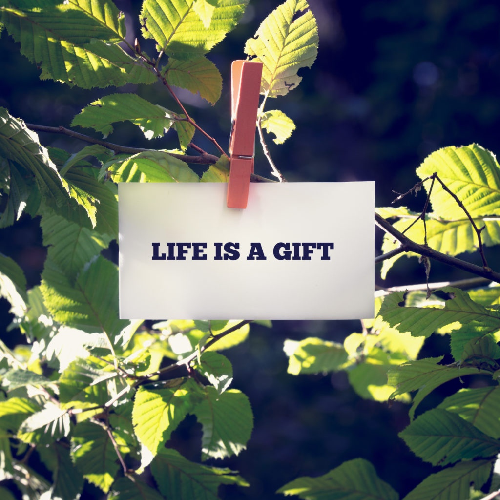 Life is a Gift inspirational and motivational message handwritten on a white card or sign hanging by a clothes peg from a green leafy branch outdoors.
